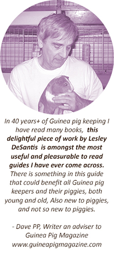 Guinea Pig Guide Testimonial - Dave Rogers