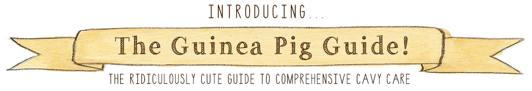 The Guinea Pig Guide - The Ridiculously Cute Guide to Comprehensive Cavy Care