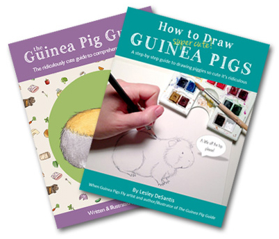 Bundle 2 contains The Guinea Pig Guide and How to Draw Super Cute Guinea Pigs - what a deal!